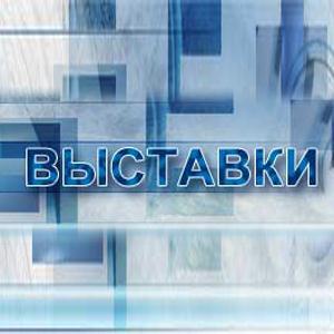 Выставки Вербовского